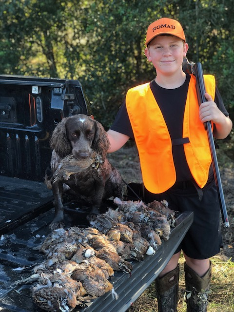 Quail Hunt with Hunting Dog